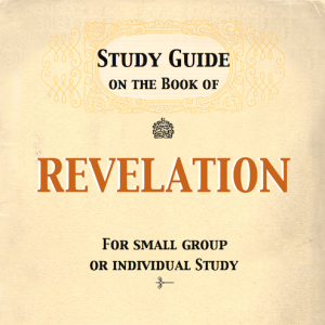 study guide book of revelation Quick and easy guide to the book of revelations by nw246 in types  books - non-fiction  religion & spirituality, bible, and revelations.